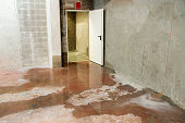 istock Water damage in basement caused by sewer backflow 1272582826