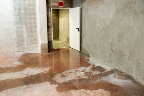 Water damage in basement caused by sewer backflow stock photo