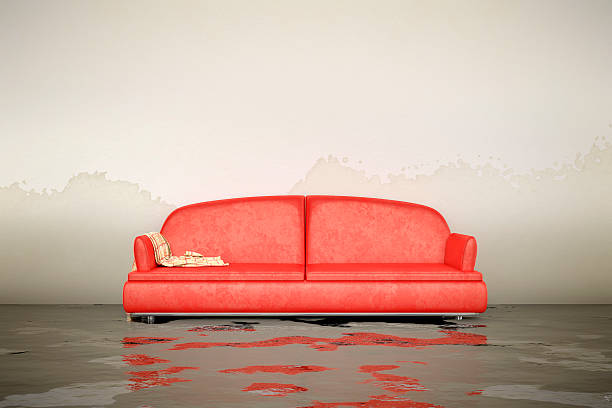 water damage sofa - flooded room stock photos and pictures
