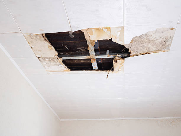 water damaged ceiling . - defects stock pictures, royalty-free photos & images