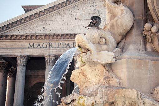 Water Detail from the Pantheon Fountain at Dusk, Rome, Italy