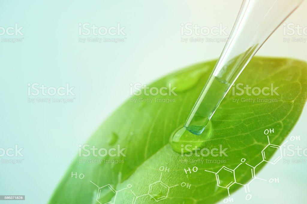 water drop from leaf and laboratory for natural chemistry concept - Photo