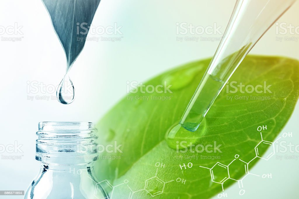water drop from leaf and laboratory for natural chemistry concept stock photo
