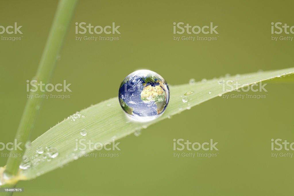 water drop globe on green leaf stock photo