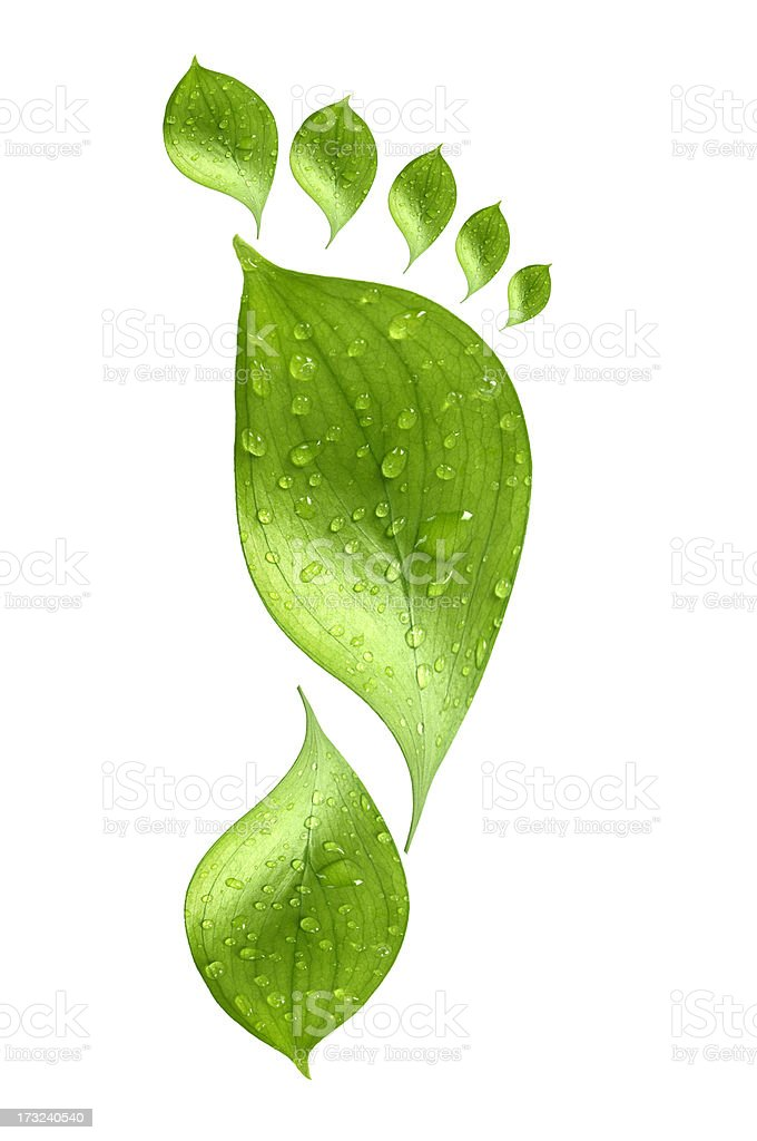 Water drop on green footprint royalty-free stock photo