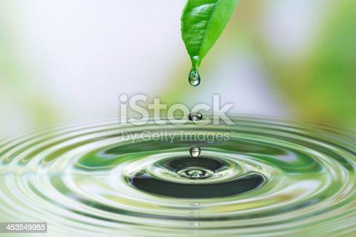 istock Water drop on leaf 453549985