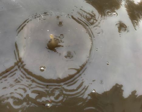 istock Water Droplet 1125237472