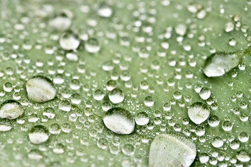 Water droplet - close up