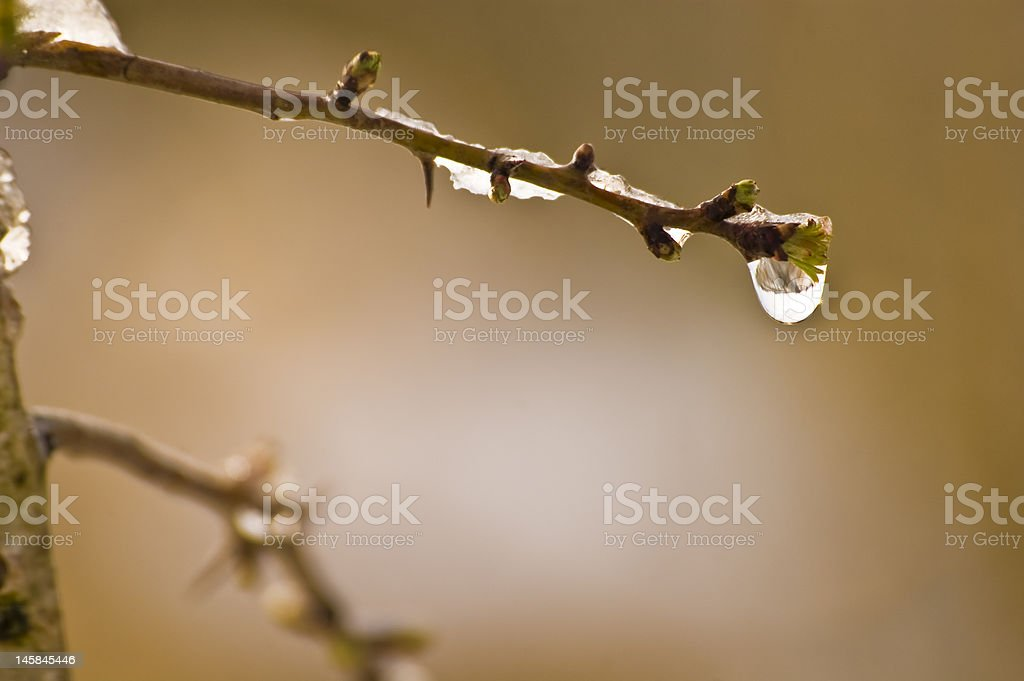water droplet stock photo