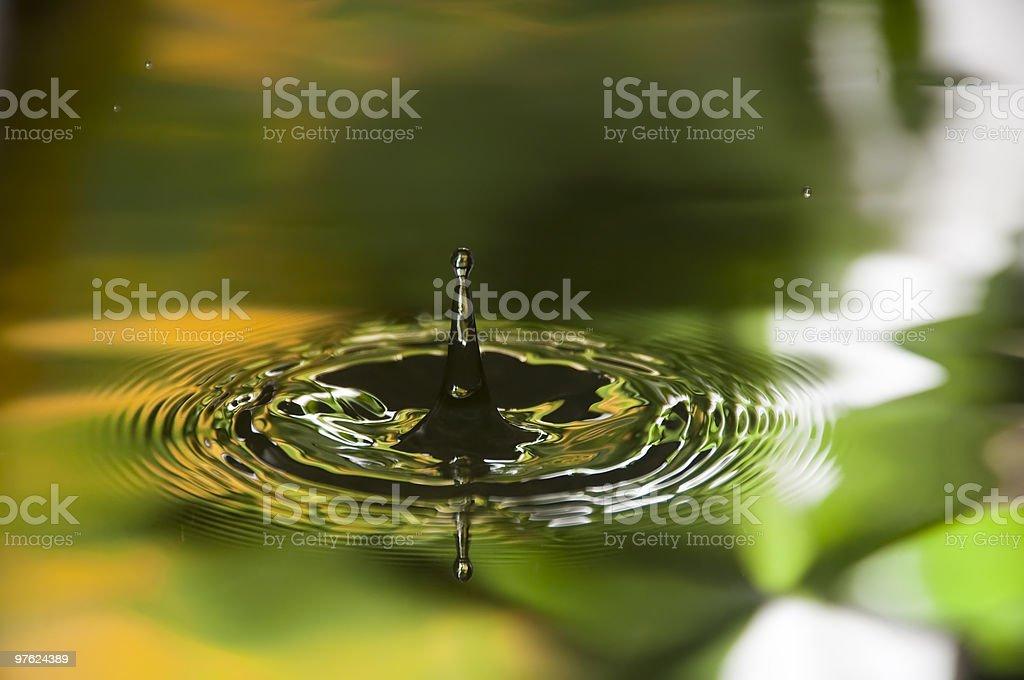 Water Droplet royaltyfri bildbanksbilder