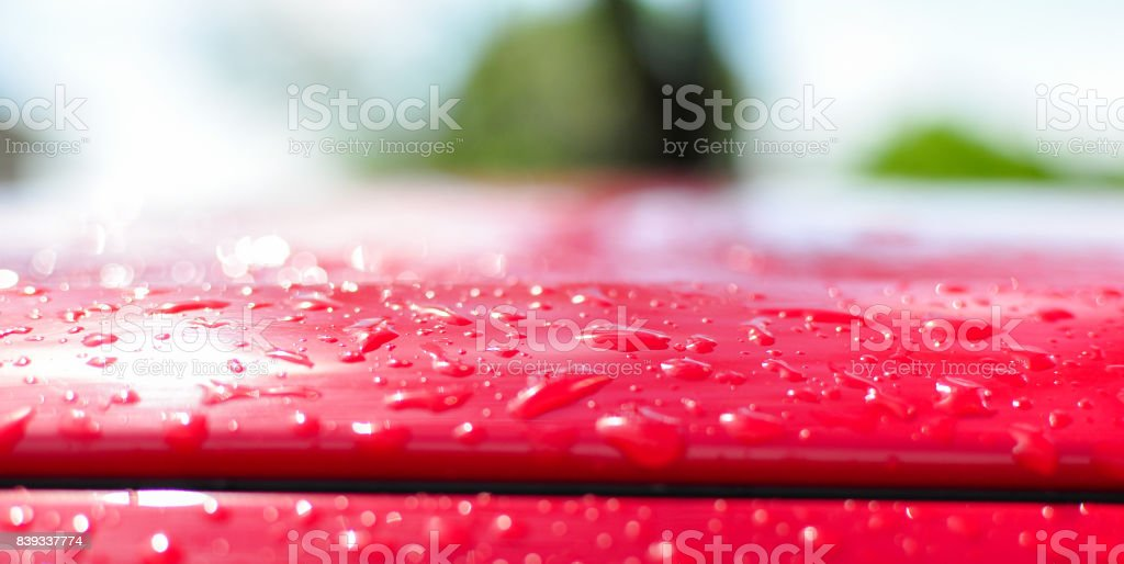 Water Droplets on a Red Car Roof stock photo