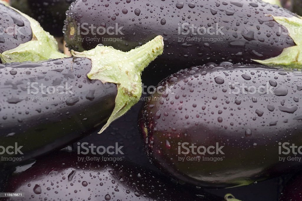 water drops on fresh aubergines royalty-free stock photo