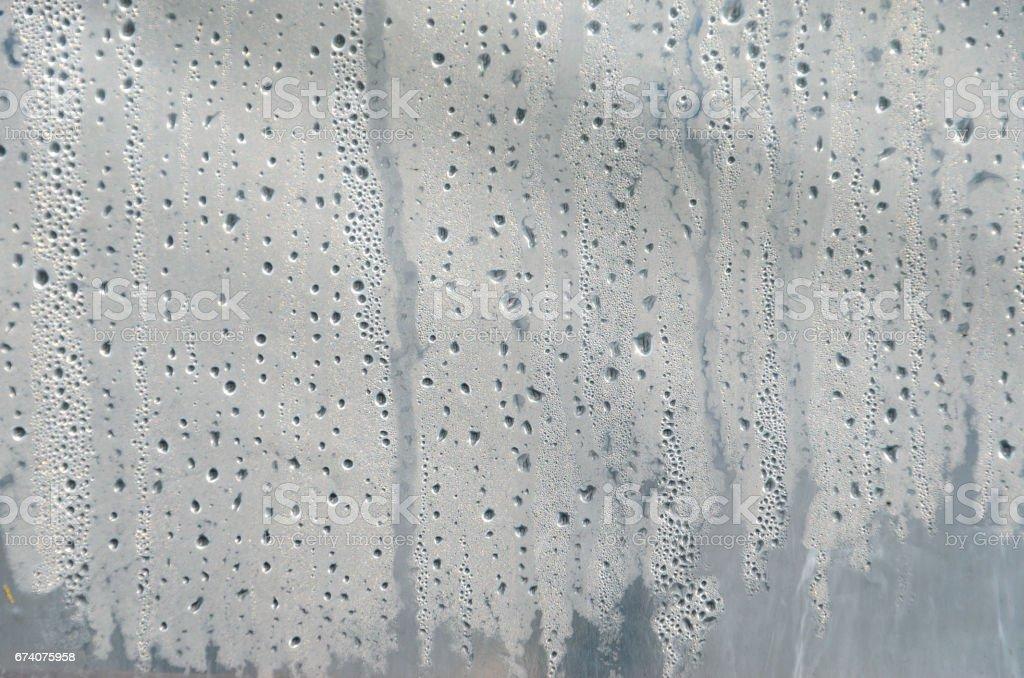 溫室薄膜表面上的水珠圖像檔
