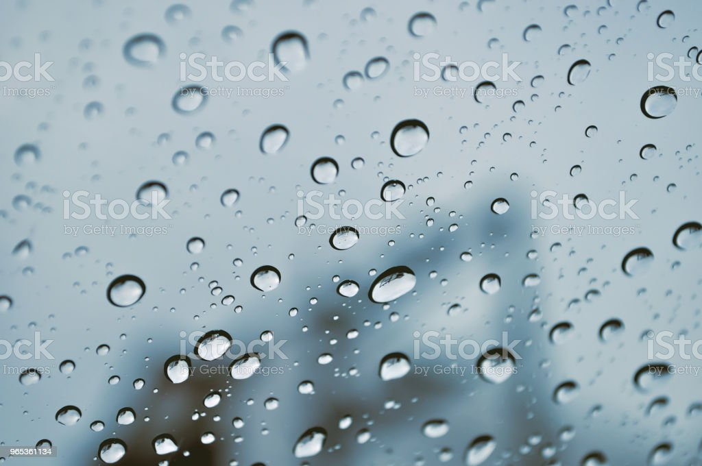 Water drops on the glass royalty-free stock photo