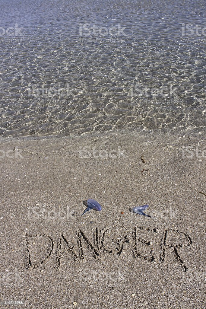 Water Edge Jellyfish Warning stock photo