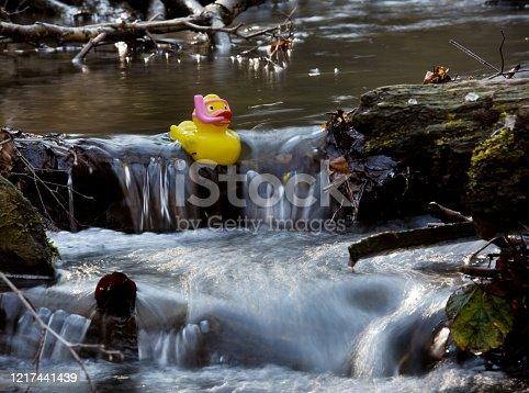 Gummiente in fließendem Gewässer