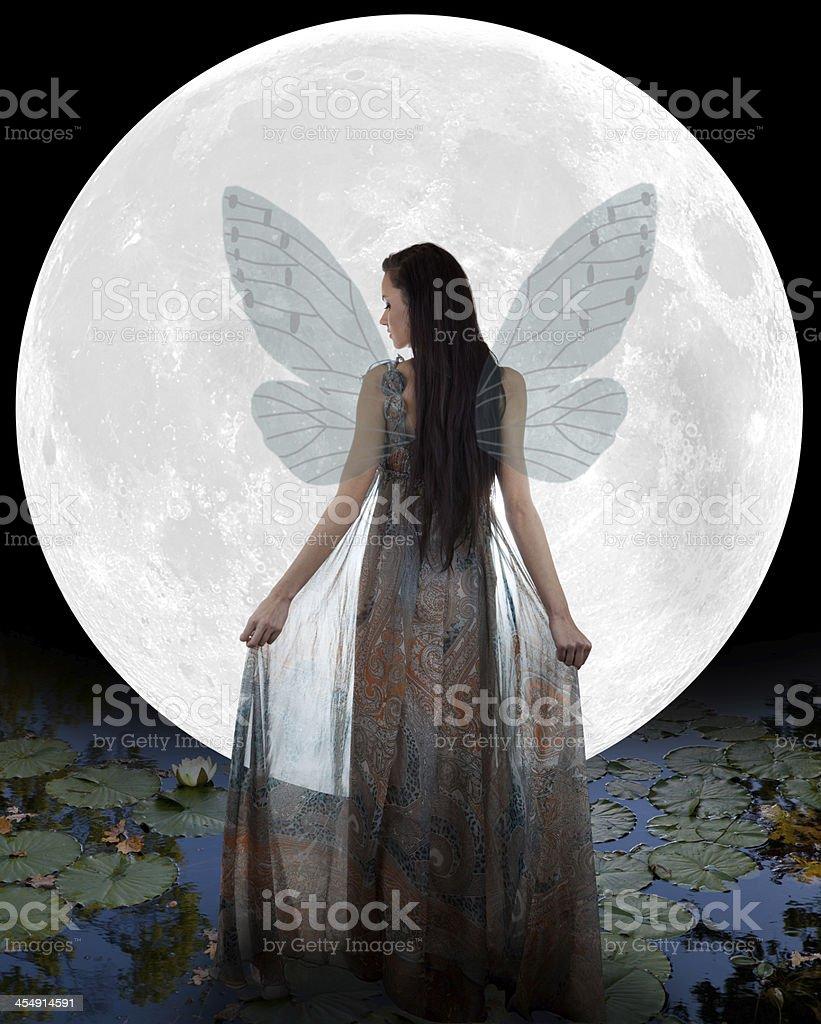 Water fairy stock photo