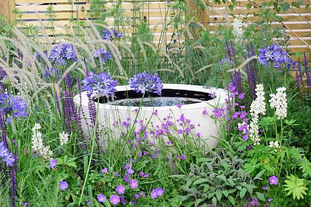 Wasserspiel mit lila Blumen – Foto