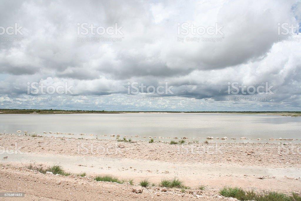 Water filled Salt Pan, Etosha National Park, Rainy Season, Namibia stock photo