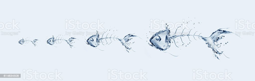 Water Fishbone Chain royalty-free stock photo