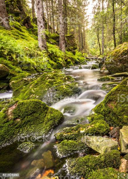 Photo of Water flow in a stream, long exposure, vertical