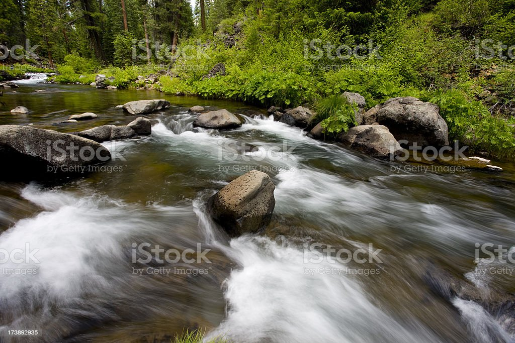 Water flowing down river surrounded by lush green foliage royalty-free stock photo