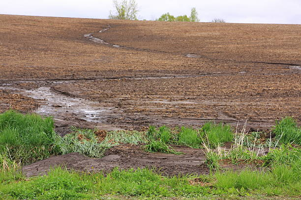 Water Flowing in Farm Field Creates Erosion A heavy spring rain creates a temporary