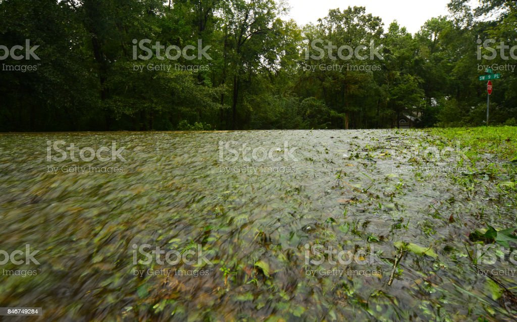 Water Flowing Over Street And Down Grassy Berm Stock Photo - Download Image  Now - iStock