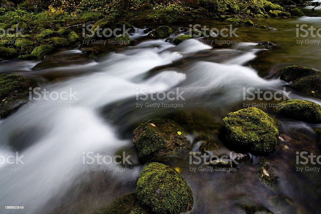 Water flows around moss covered rocks royalty-free stock photo