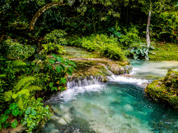 Water flows down the Mele Cascades waterfalls among lush jungle in Efate Island, Vanuatu, near Port Vila Water flows down the Mele Cascades waterfalls among lush jungle in Efate Island, Vanuatu, near Port Vila vanuatu stock pictures, royalty-free photos & images