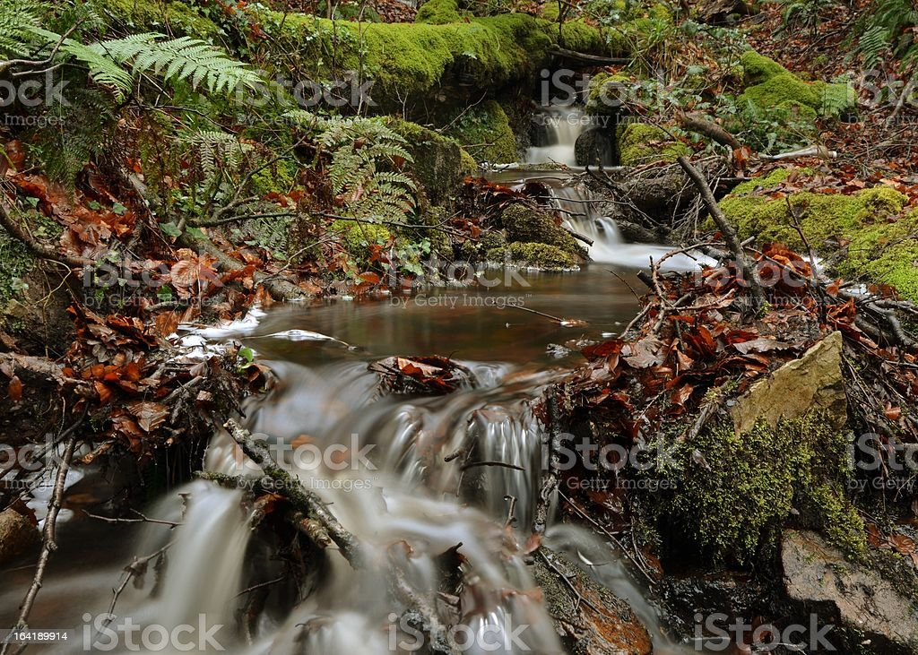 Water Flows royalty-free stock photo