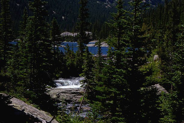 Water from Mills Lake Becomes the Source of Glacier Creek stock photo