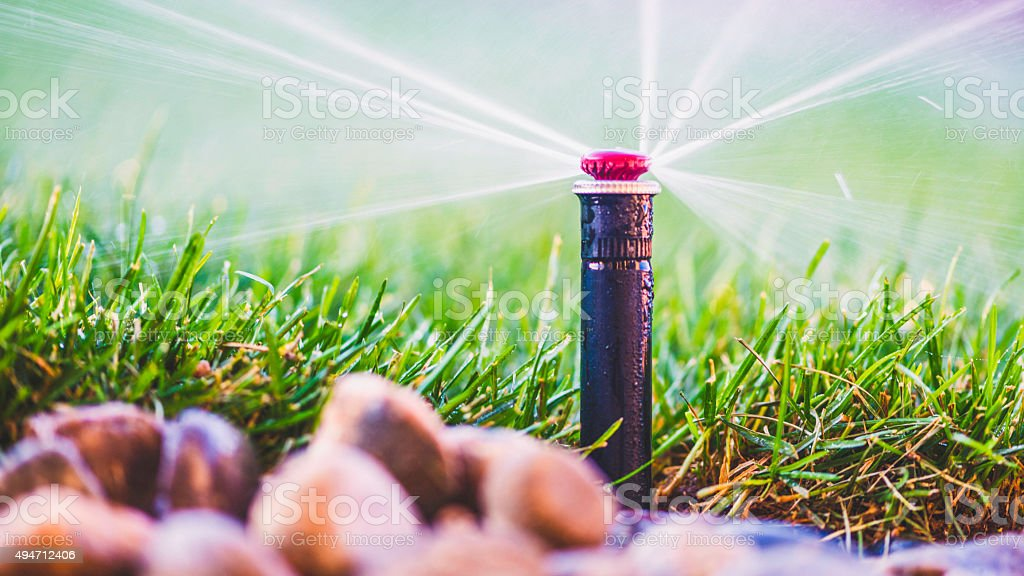 Water from sprinkler spraying over freshly laid sod stock photo