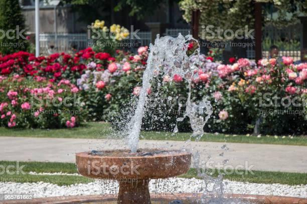 Water Gushing Off The Fountain In The Garden - Fotografias de stock e mais imagens de Ao Ar Livre