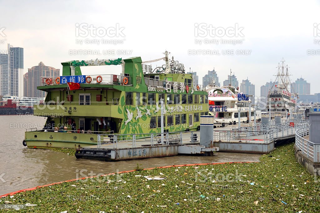 Water Hyacinth corralled in Huangpu River stock photo