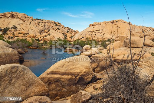 Water in desert. The reservoir above the Barker Dam in Joshua Tree National Park, California