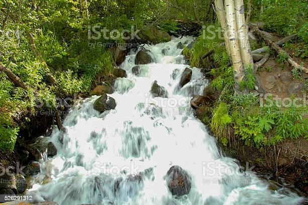 Photo of Water in Motion