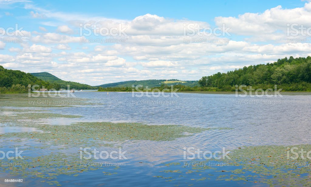 water lake with waterlilies and cloudy sky reflections and mountains stock photo