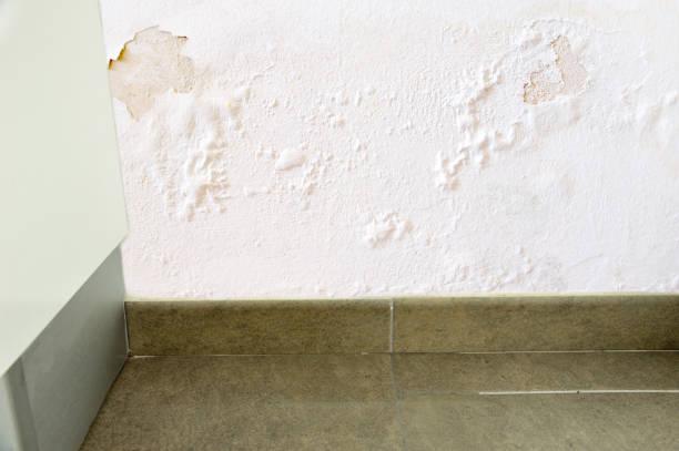 water lekkage in de muur - luchtvochtigheid stockfoto's en -beelden