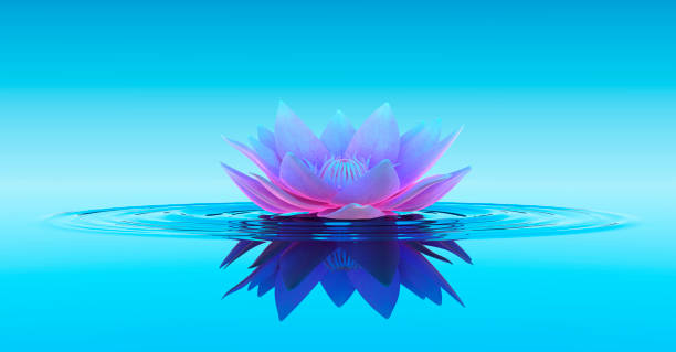 Water Lily Abstract Fantasy Background stock photo