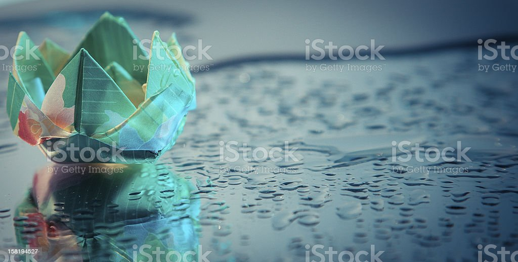 Water Lily Reflection Blue stock photo