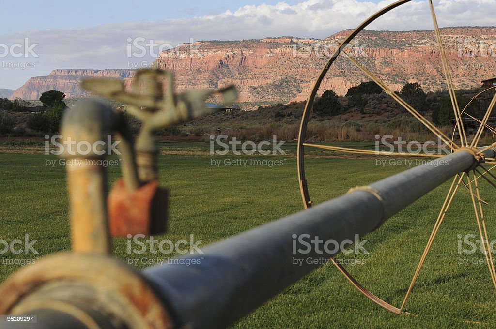 Water Line, Desert Farm royalty-free stock photo