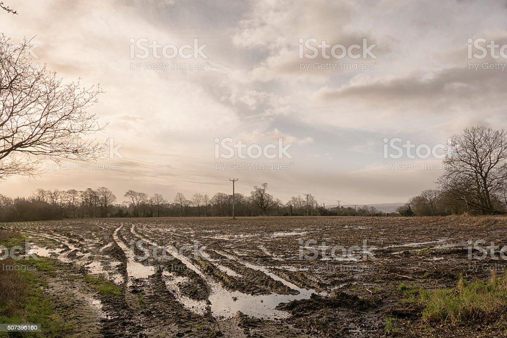 Water logged fields stock photo