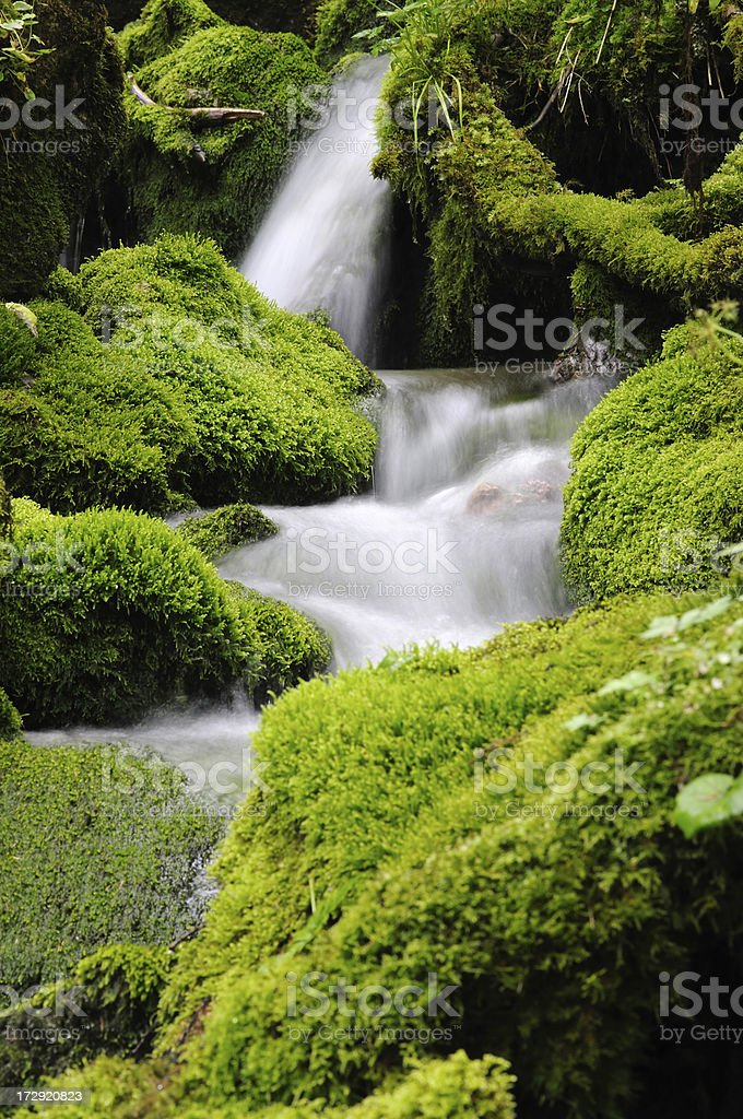 Water. royalty-free stock photo