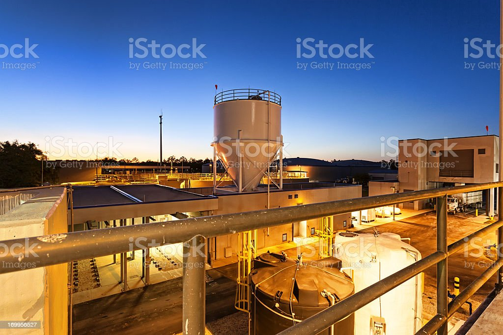 Water Plant stock photo