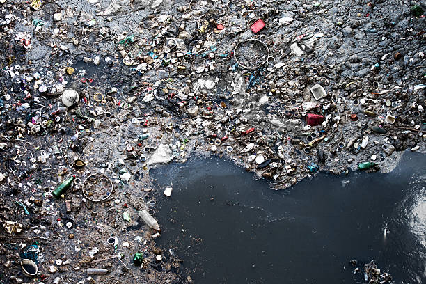 water pollution - pollution stock photos and pictures