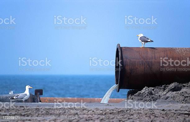 Water pollution picture id172259171?b=1&k=6&m=172259171&s=612x612&h=dnwo5fpdrmob6kajpfab2zboib8dkkkx2uvbn6ho3bi=