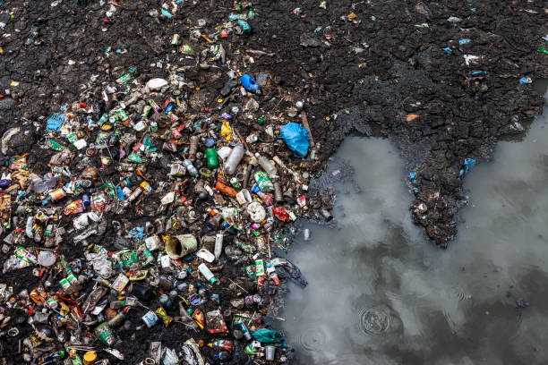 water pollution - ocean plastic stock pictures, royalty-free photos & images