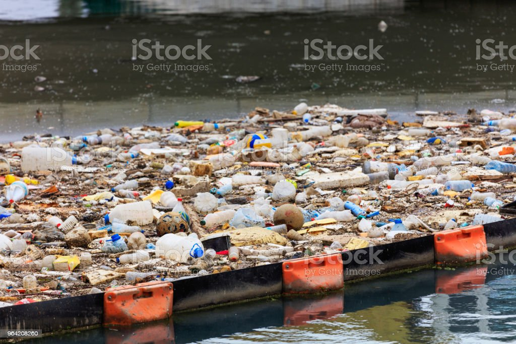 Water Pollution - Polluting the Seas