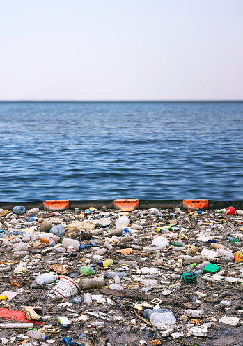 Water Pollution Polluting The Seas Stock Photo - Download Image Now